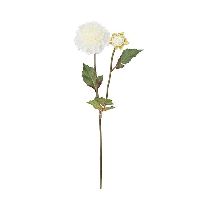 Konstväxt Dahlia 50 cm vit