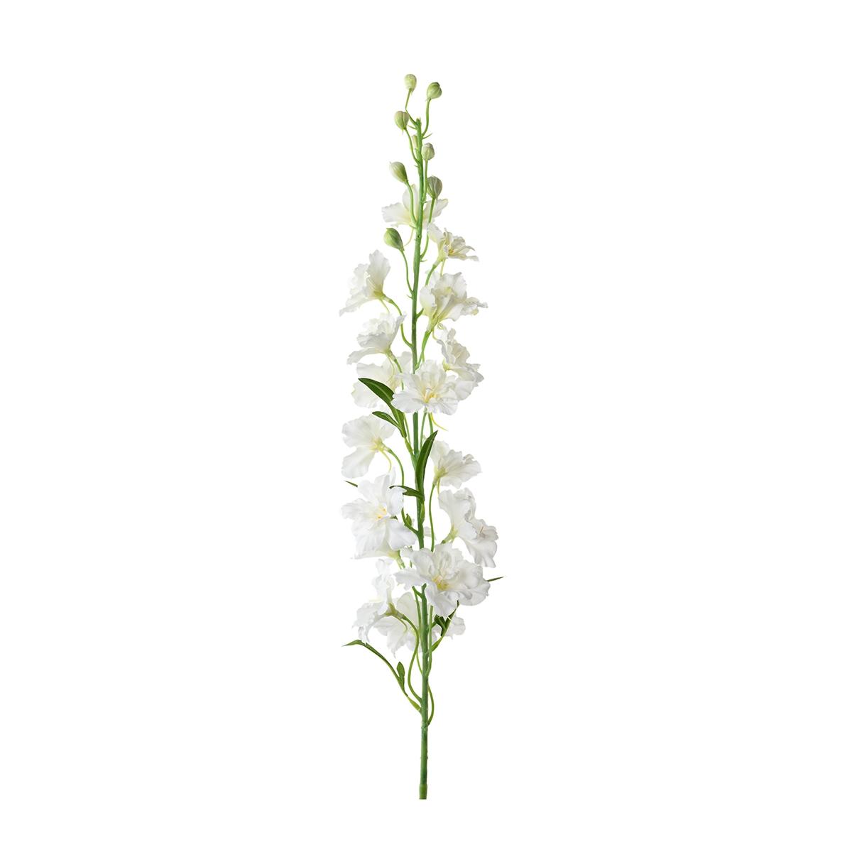 Konstväxt Riddarsporre  Delphinium 90 cm vit