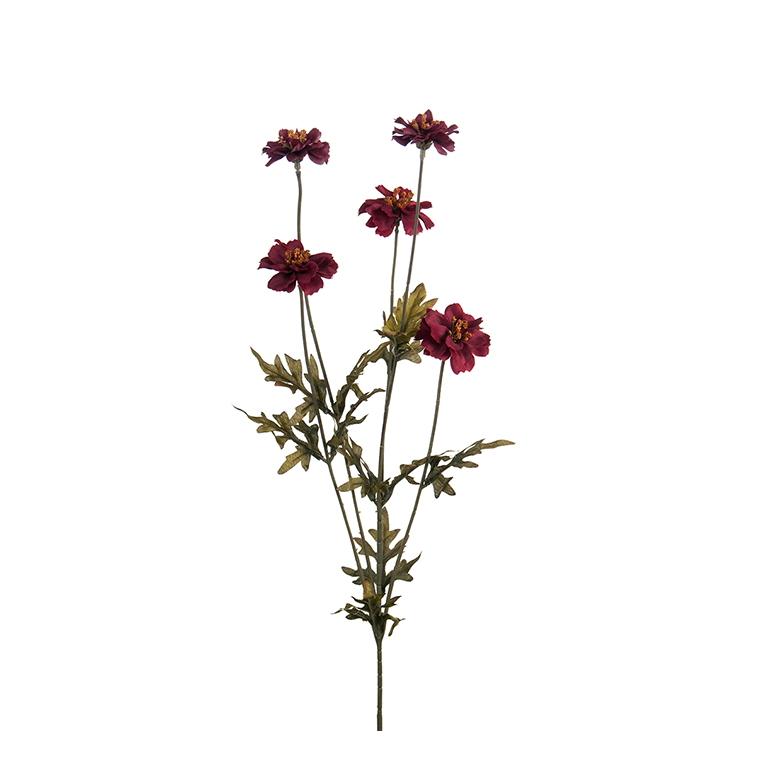 Konstväxt  Höstöga Coreopsis 75 cm gul