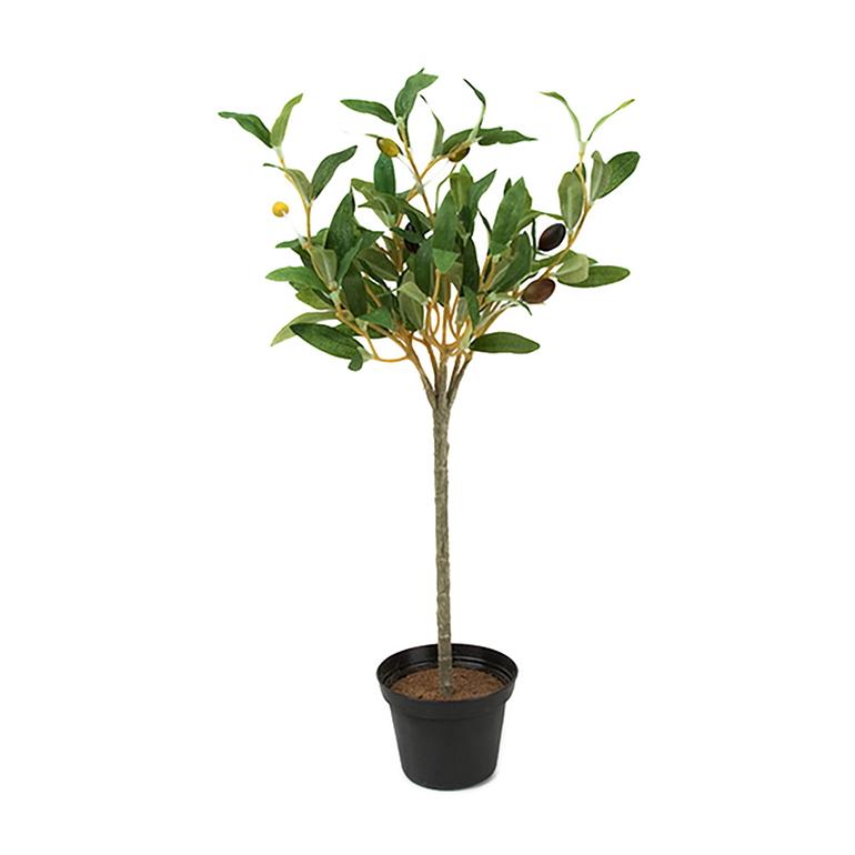 Konstväxt Olivträd 40 cm kruka